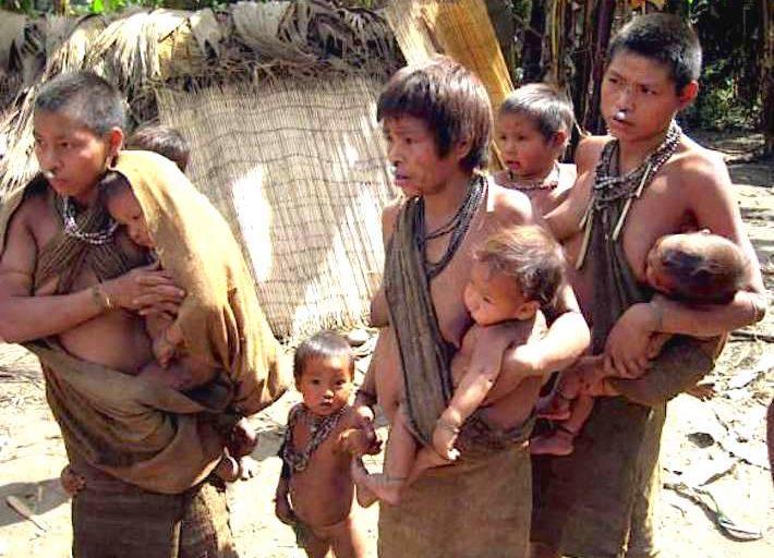 Al interior de la Reserva Territorial Kugapakori, Nahua, Nanti y otros se encuentran viviendas temporales como esta, habitadas por indígenas aislados. Crédito: Survival International.