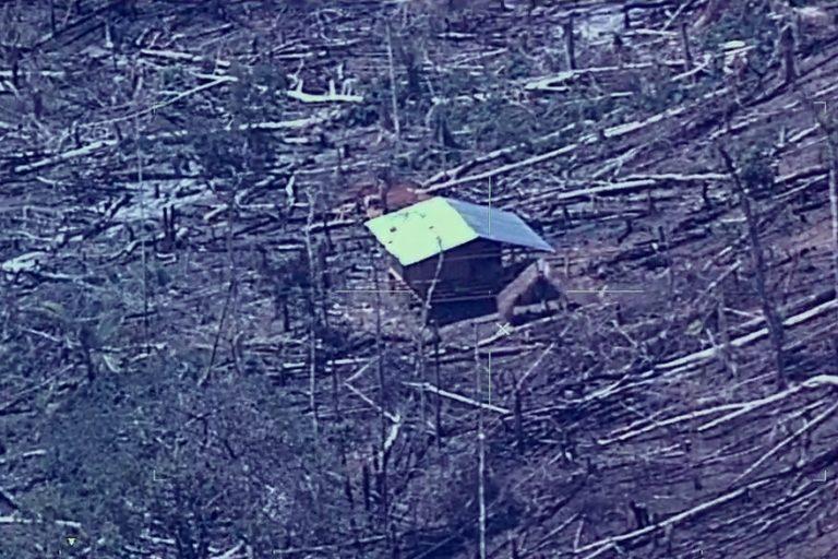 Esta imagen que muestra la destrucción de los bosques se repite en todo el territorio de Ucayali. Foto: Cevan / FAP