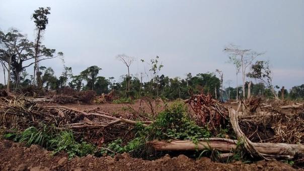 Mongabay Latam estuvo hace un año en la zona donde murieron seis personas en un conflicto por tierras. Foto: Yvette Sierra Praeli.