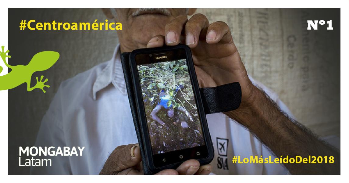 Irene Ayala, 77, enseña la foto de su nieto, Luis Fernando, tal como lo encontraron sus familiares en una plantación de café en el municipio de Concepción Sur, después haber sido secuestrado y asesinado. Foto: Simone Dalmasso