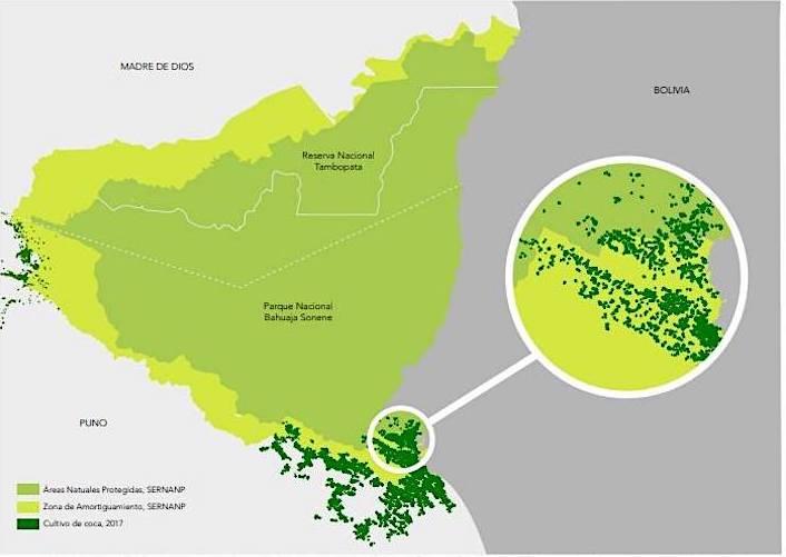 El último informe de Monitoreo de Cultivo de Coca de la UNODC corrobora lo denunciado por Mongabay Latam: el aumento de plantaciones ilegales dentro y fuera del Bahuaja Sonene. Fuente: Sistema Integrado de Monitoreo de Cultivos ilícitos apoyado por UNODC.