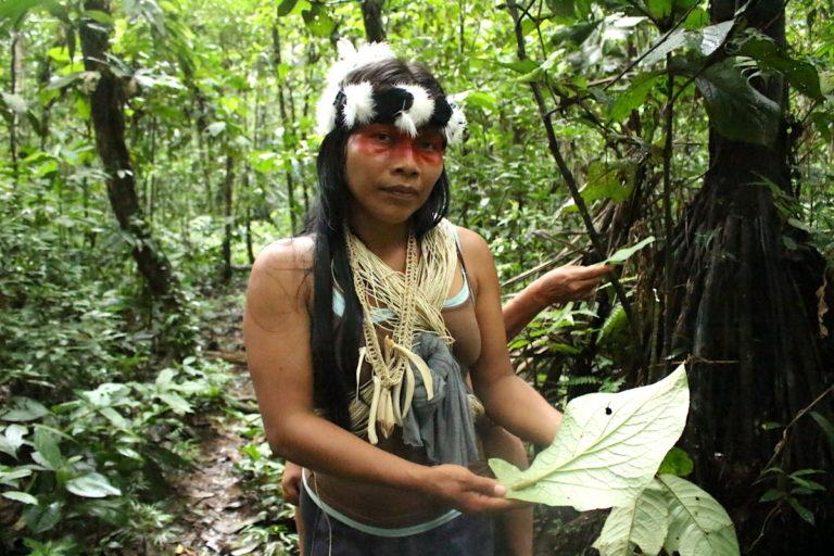 coronavirus En Ecuador no existen protocolos específicos para los pueblos indígenas en situaciones como la que Foto: Daniela Aguilar.