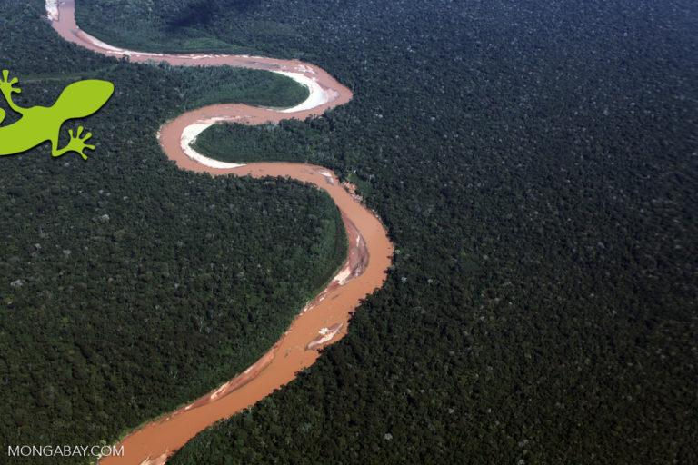 Foto aérea de la Amazonía del Perú Foto: Mongabay