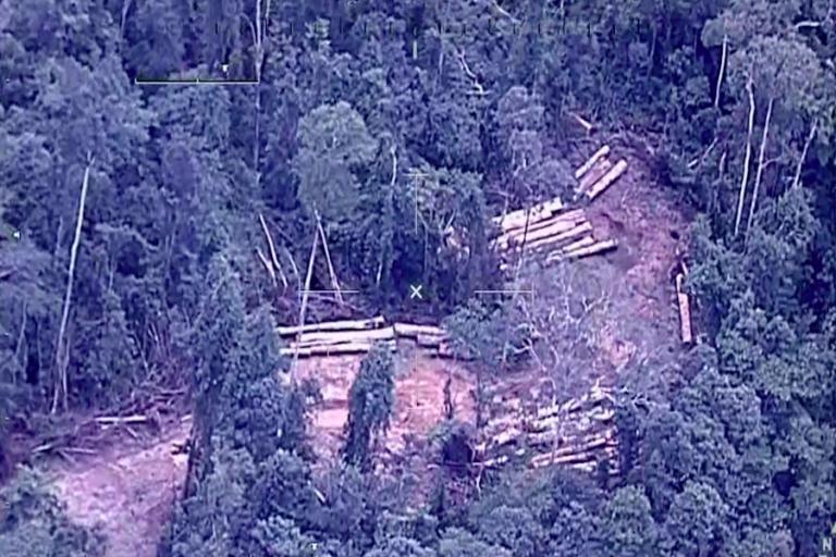Sector deforestado en una concesión de castaña en Madre de Dios. Foto: FAP / CEVAN.
