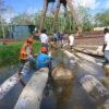 Una variedad de permisos de tala se han utilizado para blanquear madera cuyo valor estimado es de 112 millones de dólares. Foto: Osinfor.