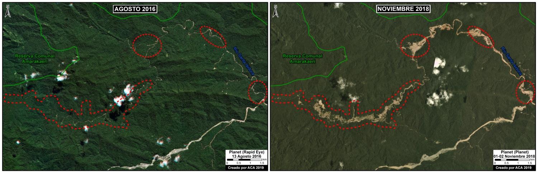 la minería ilegal arrasó con 335 hectáreas de bosques en Camanti entre agosto de 2016 y noviembre de 2018. Imagen: MAAP / Conservación Amazónica (ACCA) – Amazon Conservation (ACA).