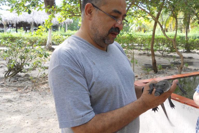 Giovanni Ulloa lleva más de 15 años trabajando en la recuperación y conservación del caimán aguja en la bahía de Cispatá. Foto: Gavierofilms.