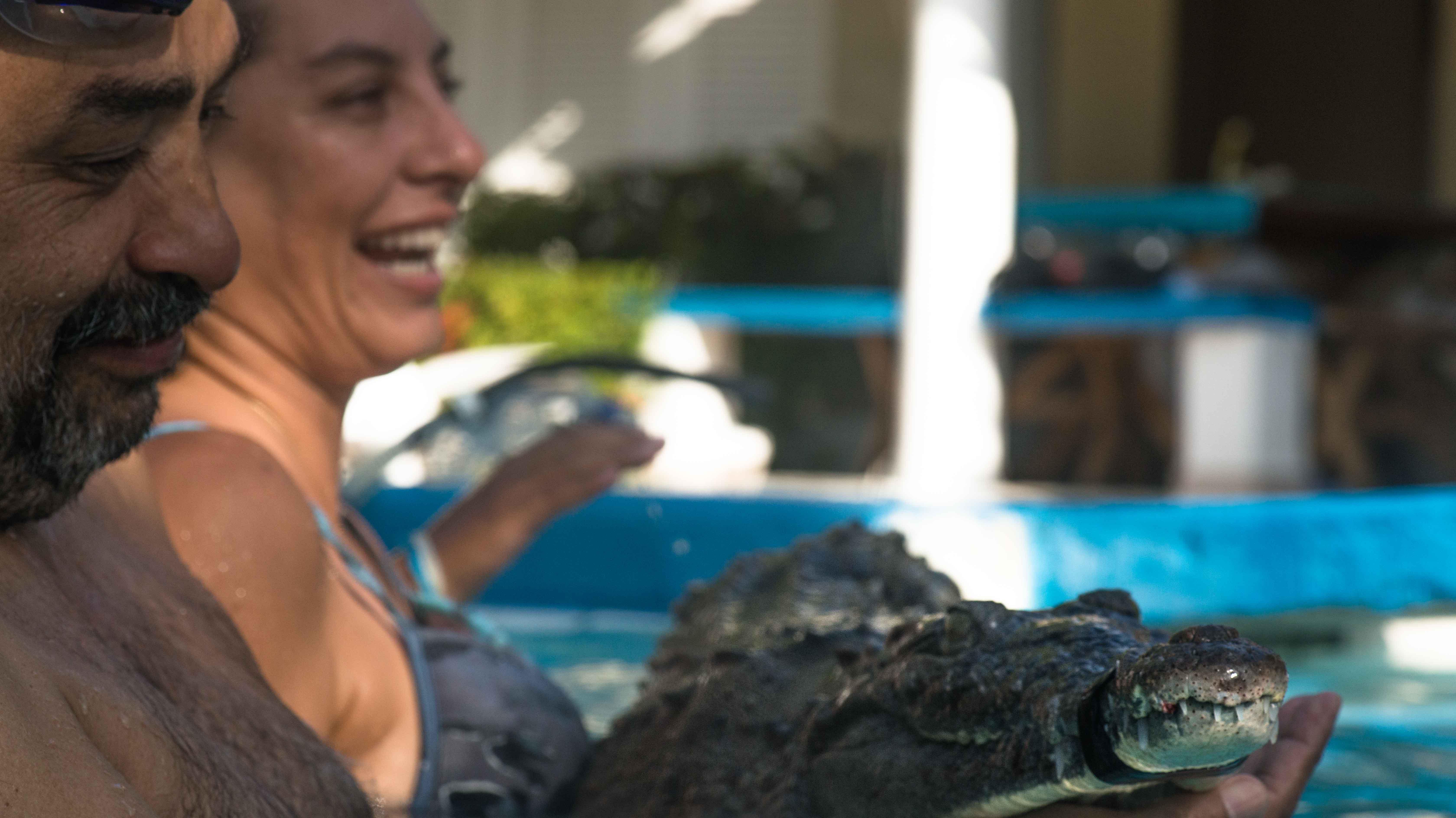 Los biólogos Giovanni Ulloa y Clara Lucía Sierra sostienen un caimán aguja. Foto: Gavierofilms.