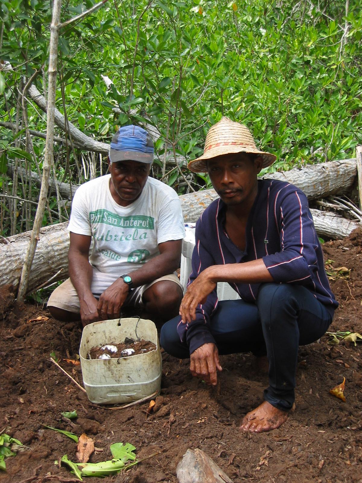 Recolectores de nidos de caimán aguja en Cispatá. Foto: Gavierofilms.