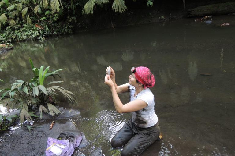 Casi dos semanas tardó la bióloga Maribel Arias en encontrar el primer individuo de cangrejo mandarina. Foto: Cortesía Maribel Arias.
