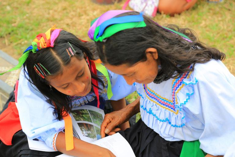 coronavirus Narel Paniagua investiga sobre las plantas medicinales y el conocimiento tradicional. Foto: Narel Paniagua.