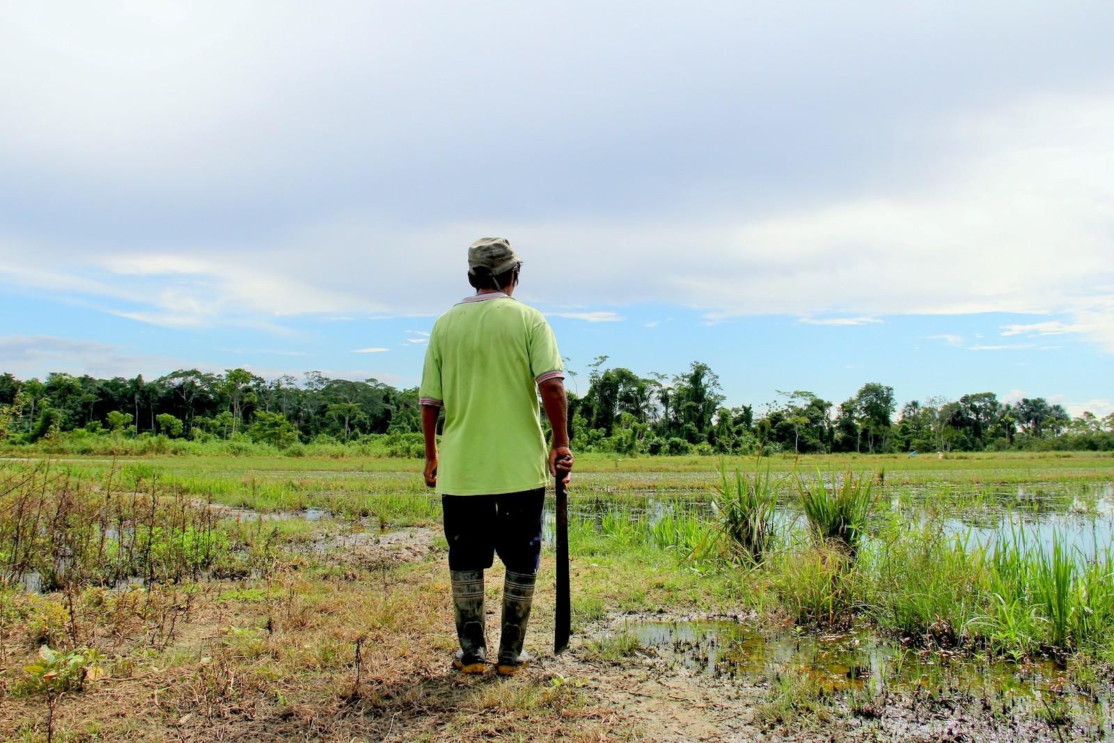 En la zona de amortiguamiento de la Reserva Nacional del Tambopata, en Madre de Dios, existen hombres y mujeres que por doce años han resistido las amenazas de la minería y tala ilegal. Foto: Vanessa Romo / Mongabay Latam