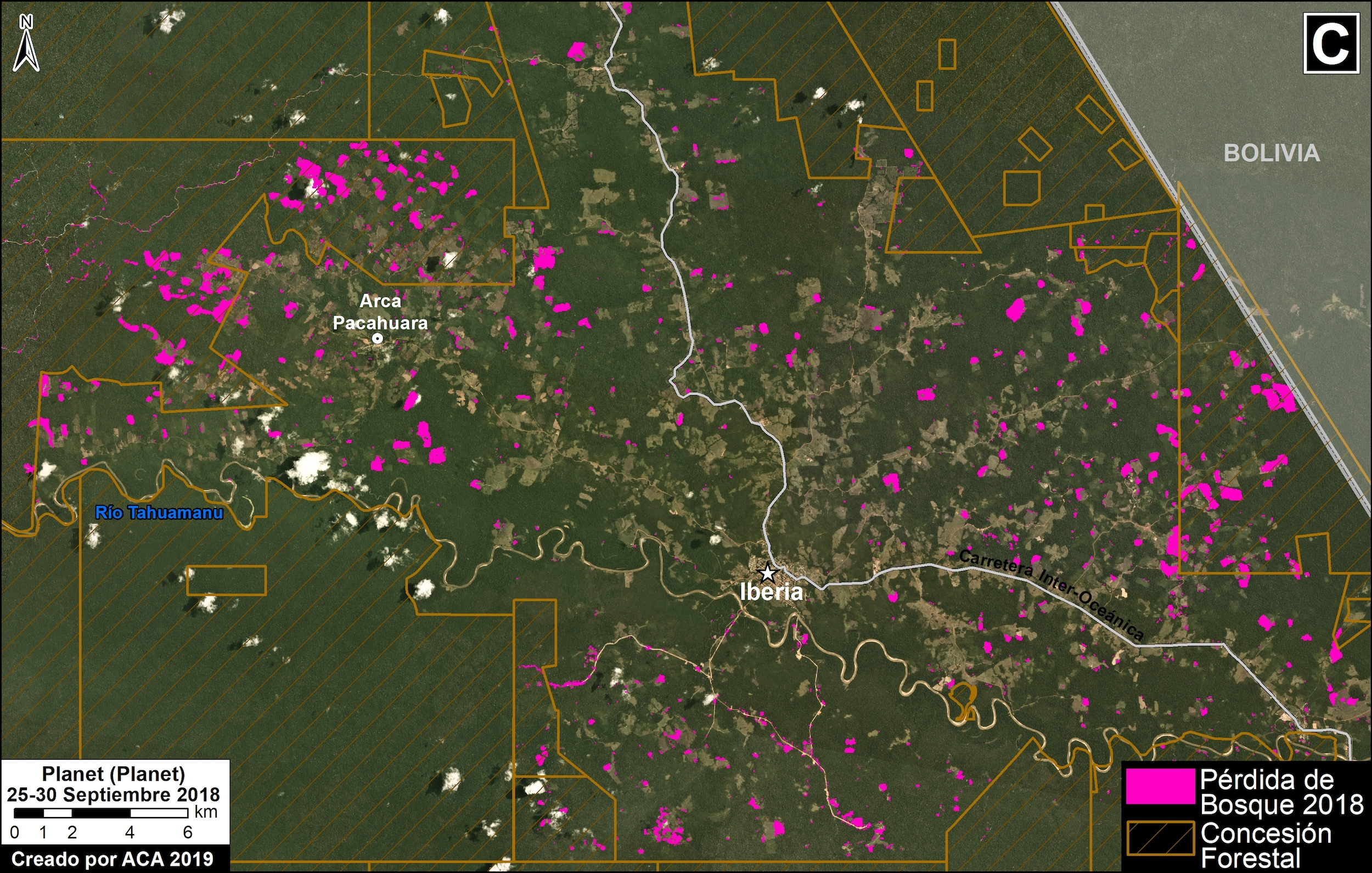 Cultivos ilegales se observan en concesiones forestales en la zona de Iberia, en Madre de Dios, Imagen: MAAp / ACCA.