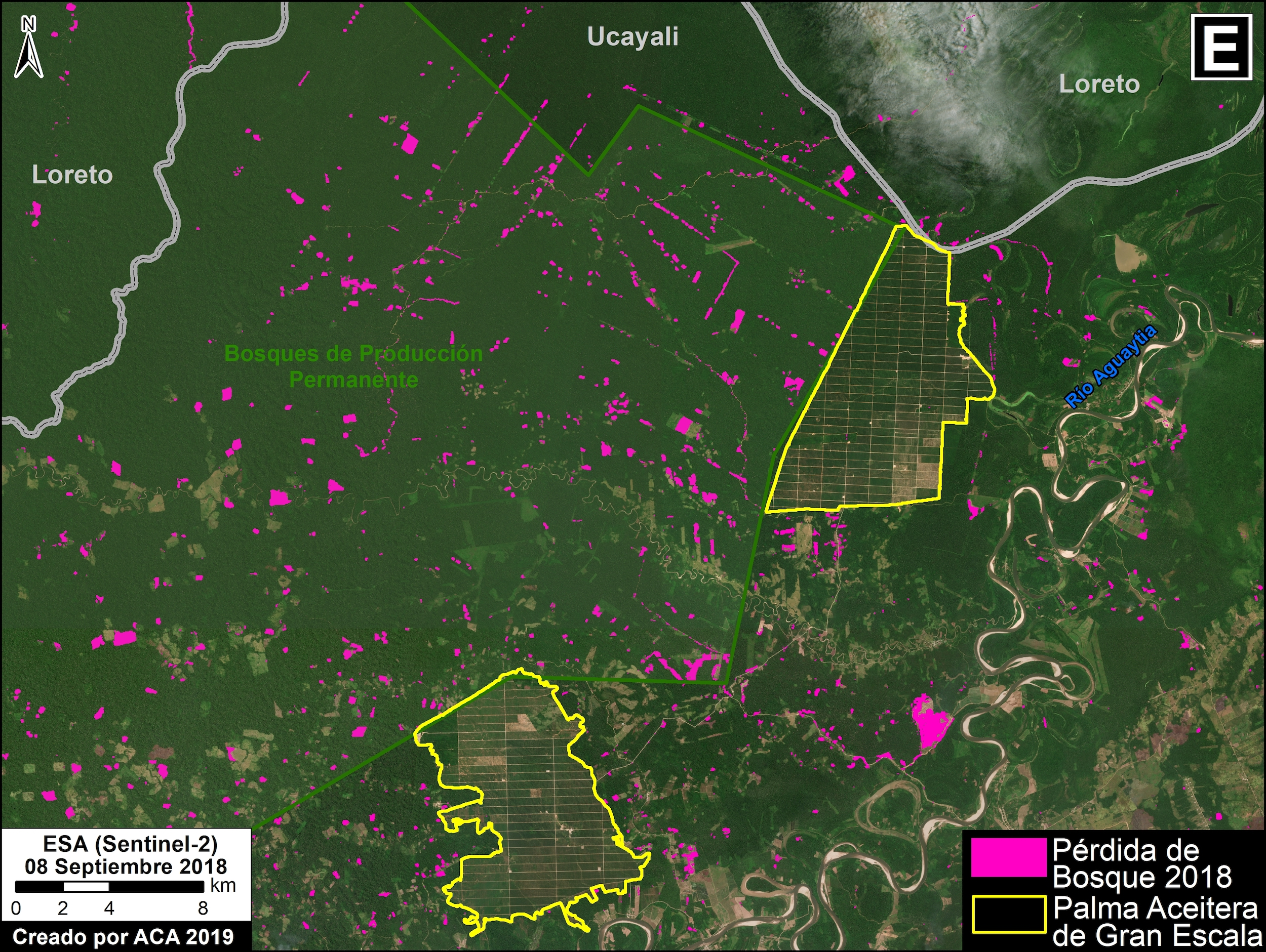 La pérdida de cobertura forestal avanza en los Bosques de Protección Permanente de Ucayali. Imagen: MAAP / ACCA.