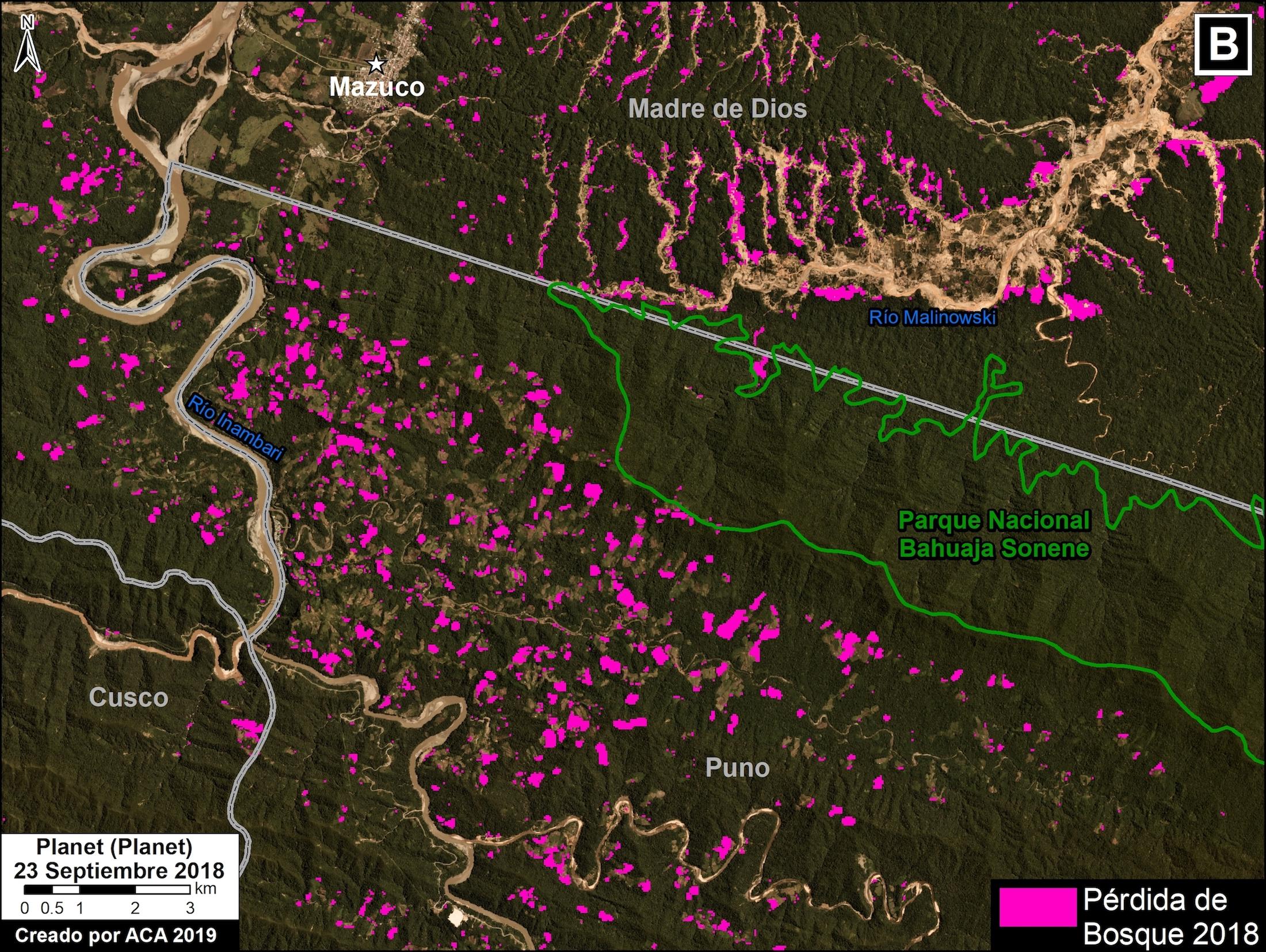 Deforestación por minería ilegal y cultivos de coca rodean al Parque Nacional Bahuaja Sonene. Imagen: MAAP / ACCA.
