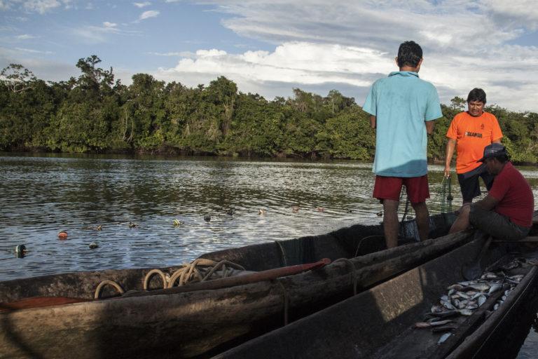 La propuesta de la Hidrovía Amazónica es mejorar el transporte fluvial en una extensión de 2687 kilómetros. Foto: DAR.