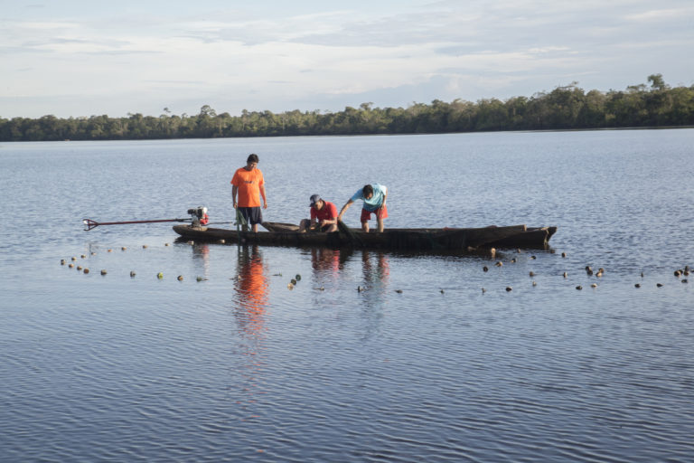Estudio de impacto ambiental de la Hidrovía Amazónica tenía más de 400 observaciones. Foto: DAR.