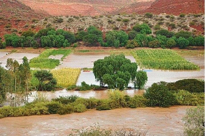Campos de cultivo han quedado bajo las aguas. Foto: Defensa Civil.