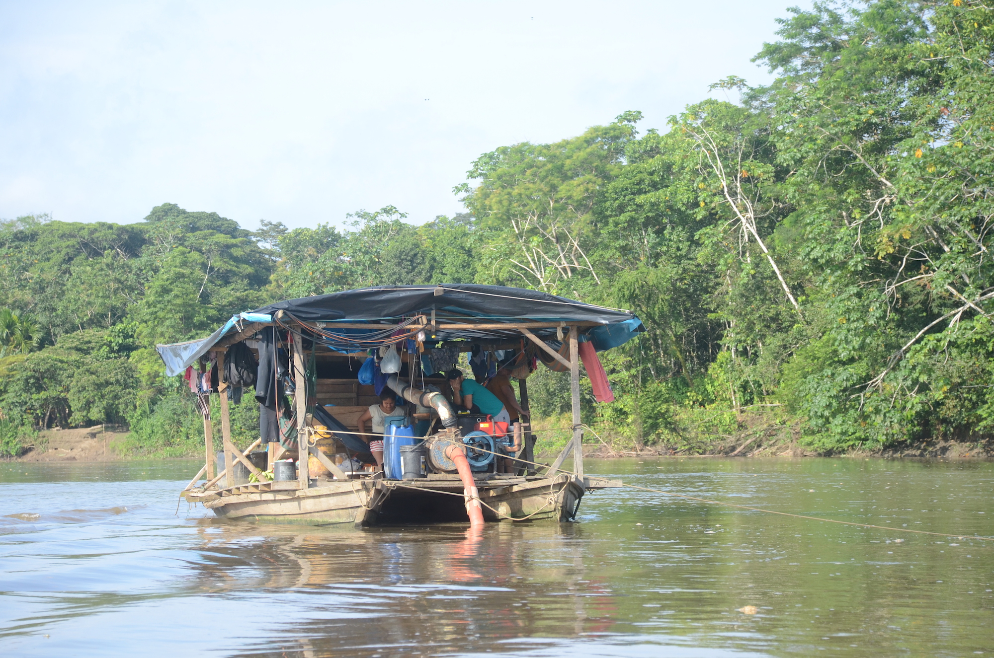 Las pequedragas, embarcaciones artesanales dedicadas a extraer oro ilegal, navegan libremente en el río Napo. Foto: Yvette Sierra Praeli para Mongabay Latam.