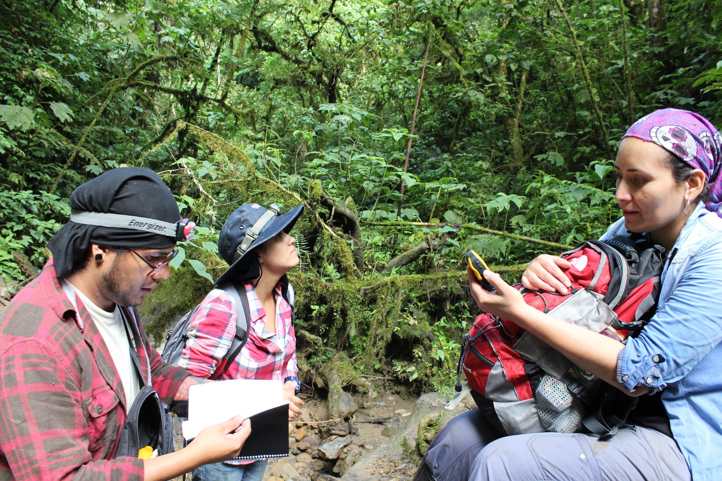 Una campaña de recaudación de fondos ayudó a los científicos a continuar con sus expediciones. Foto: Stephane Knoll.