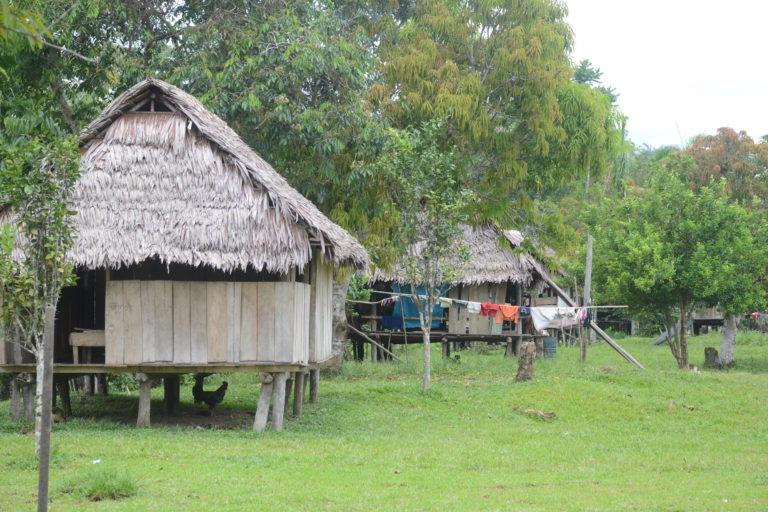 Comunidad de San Fernando en Iquitos, Perú. Foto: Yvette Sierra Praeli.