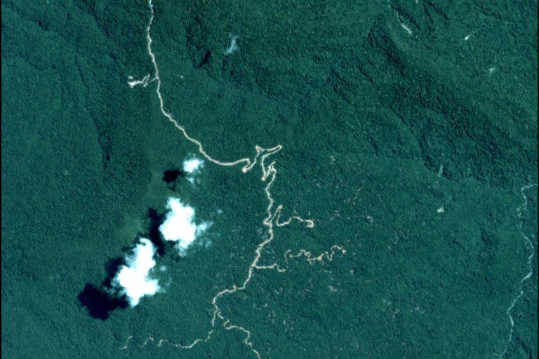 Imagen satelital de caminos forestales en medio de la selva peruana. Foto: MAAP / ACCA.
