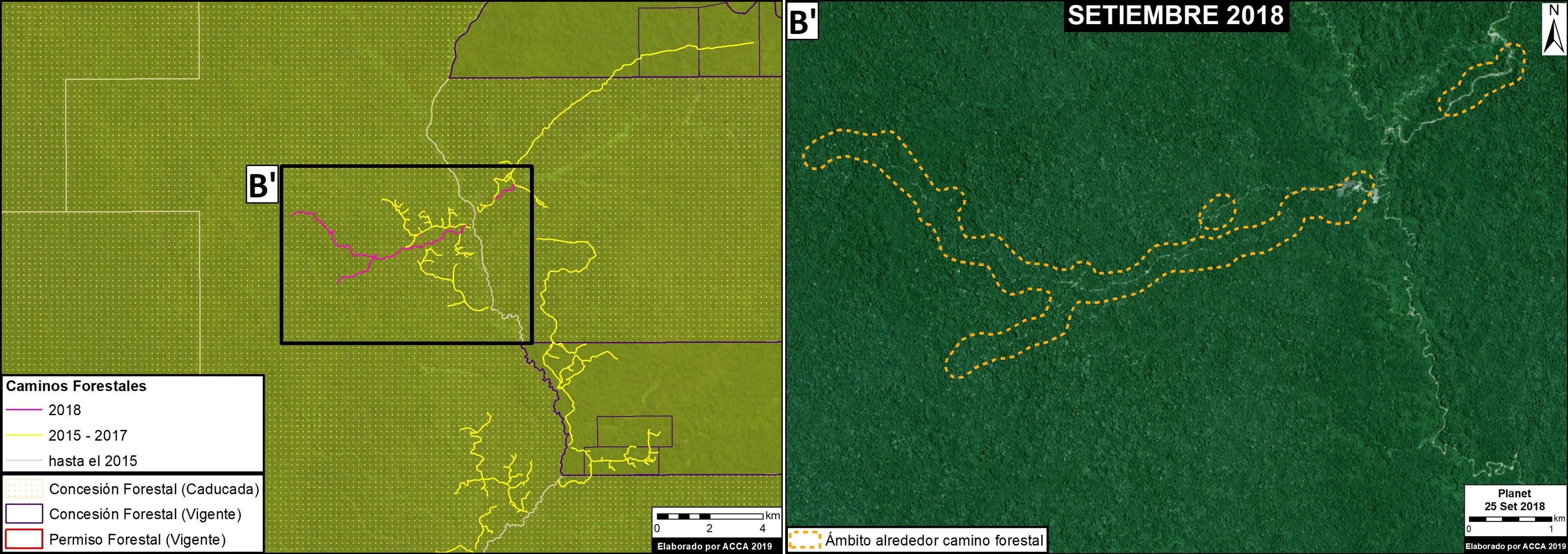 Una vía forestal que llega a una concesión caducada en el distrito de Masisea, provincia de Coronel Portillo. Imagen: MAAP / ACCA.