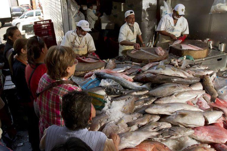 Desafíos 2020 Perú Una investigación sobre sustitución de especies determinó que hasta el 70% de los pescados comercializados no corresponde a la especie que se indica. Foto: Oceana.