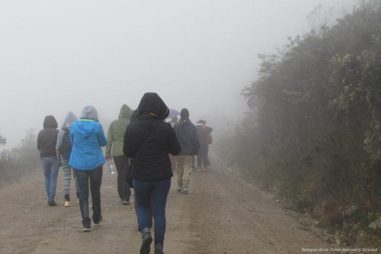 Páramo de Sumapaz. Foto: Alicia Gómez - Ambiente y Sociedad.