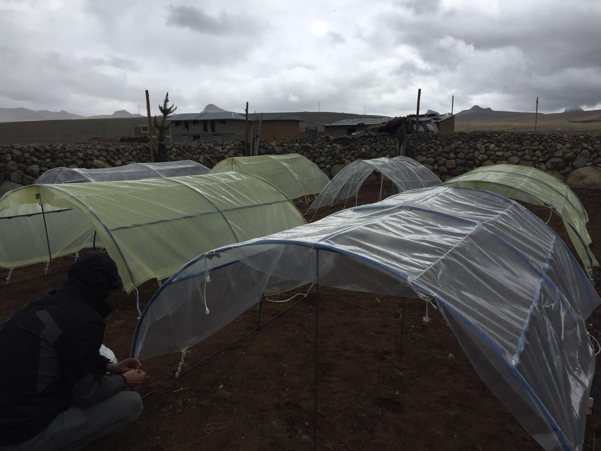 Instalaciones en la región Junín para estudiar el cultivo de maca. Foto: Archivo personal.