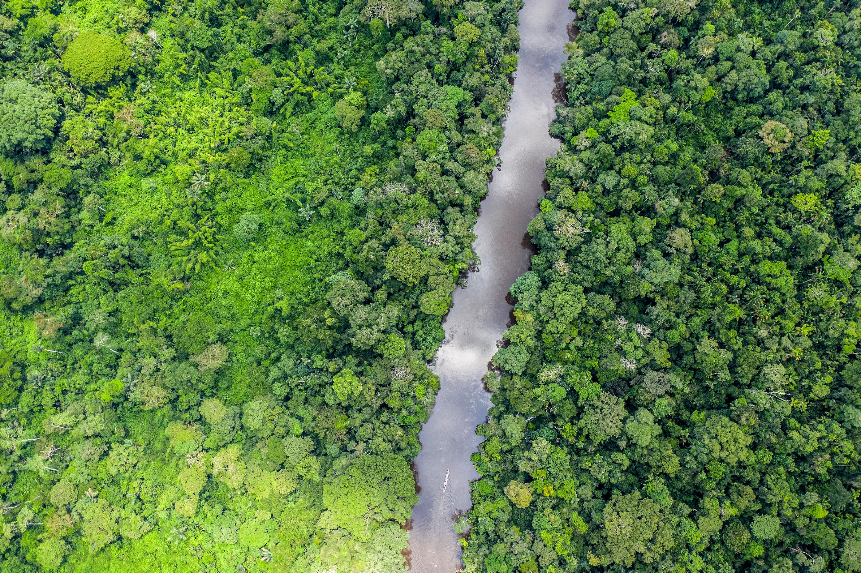 Río en el norte de la Amazonía ecuatoriana. Foto: WWF Ecuador.