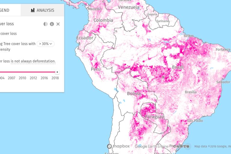 La información de la pérdida de bosques desde el 2001 se muestra en un mapa interactivo. Imagen: World Resources Institute.