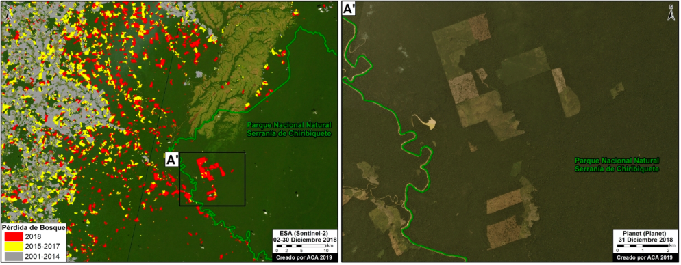 El Parque Nacional Natural Serranía de Chiribiquete es uno de las áreas protegidas afectadas por la deforestación. Imagen: MAAP / ACCA.
