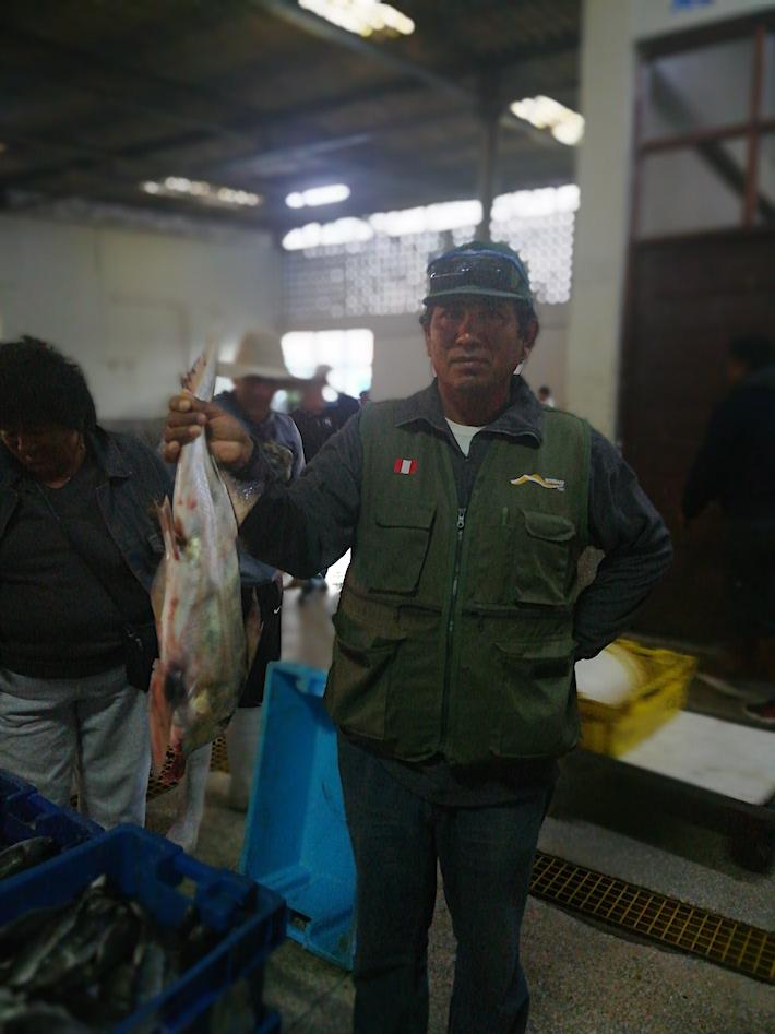 Pesca legal. Gabriel Franco sostiene un pez gallo en el muelle de San Andrés, en Pisco. Ha sido pescado legalmente, sin dinamita. No siempre ocurre así. Foto: Ramiro Escobar.