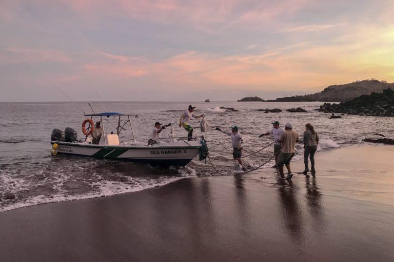 Investigadores del proyecto de conservación de iguanas terrestres de Galápagos. Foto: Parque Nacional Galápagos.