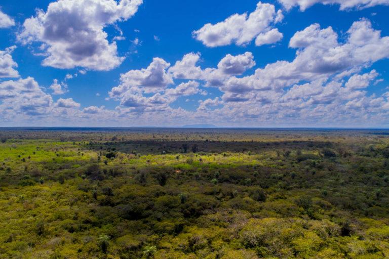 COVID 19 La reserva de Ñembi Guasu es también este año una de las zonas más afectadas por las quemas. Foto: Fundación Nativa.