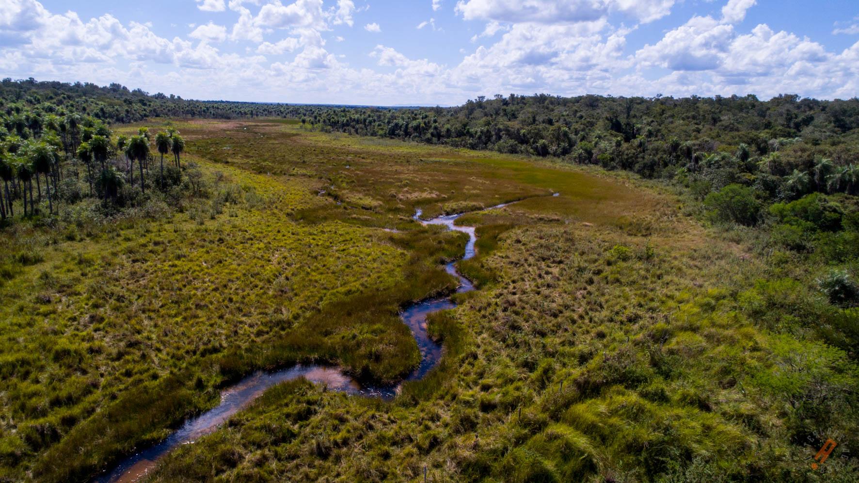 Ñambi Guasu es la segunda área de conservación más grande del Chaco boliviano. Foto: Nativa.