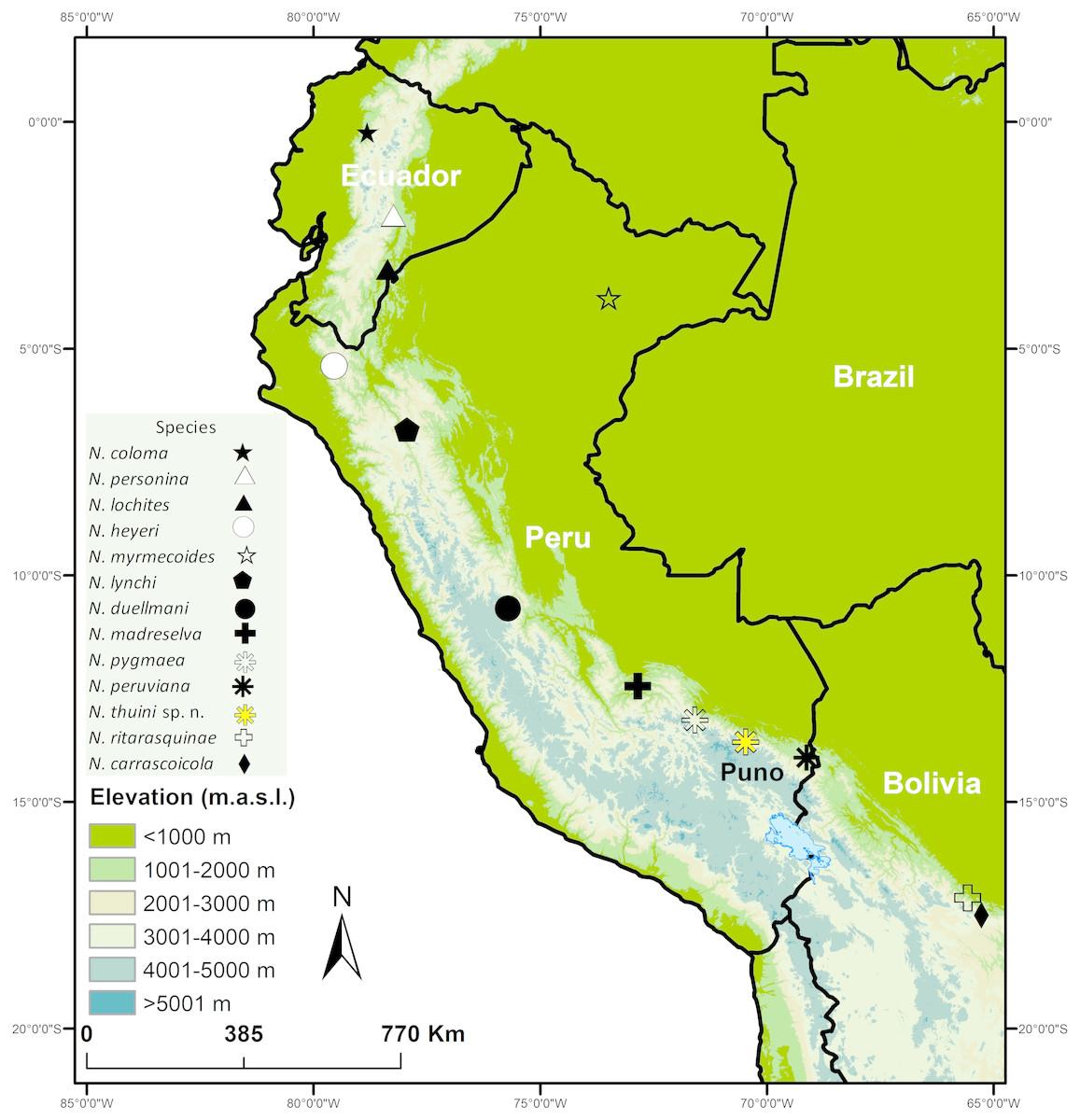 El mapa muestra la distribución de todas las especies Noblella en Perú.