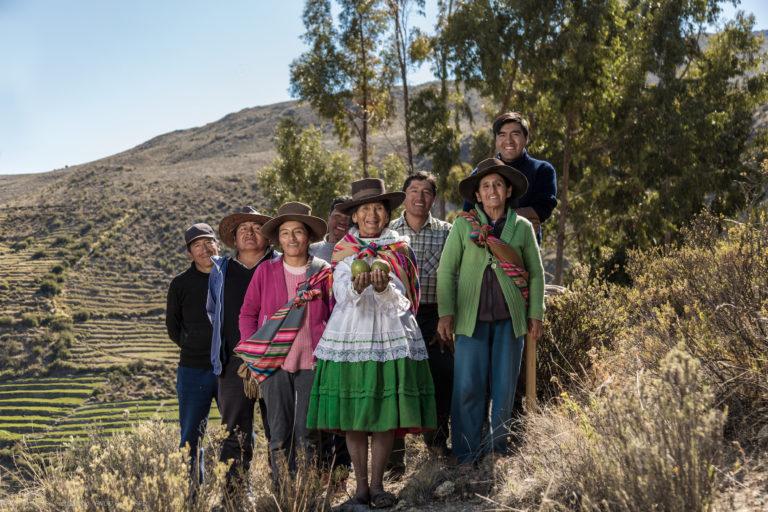 La comunidad de Yabroco cuenta con 55 hectáreas de sancoyo para su proyecto de manejo sostenible. Foto: Mónica Suárez Galindo / PNUD Perú – PPD.