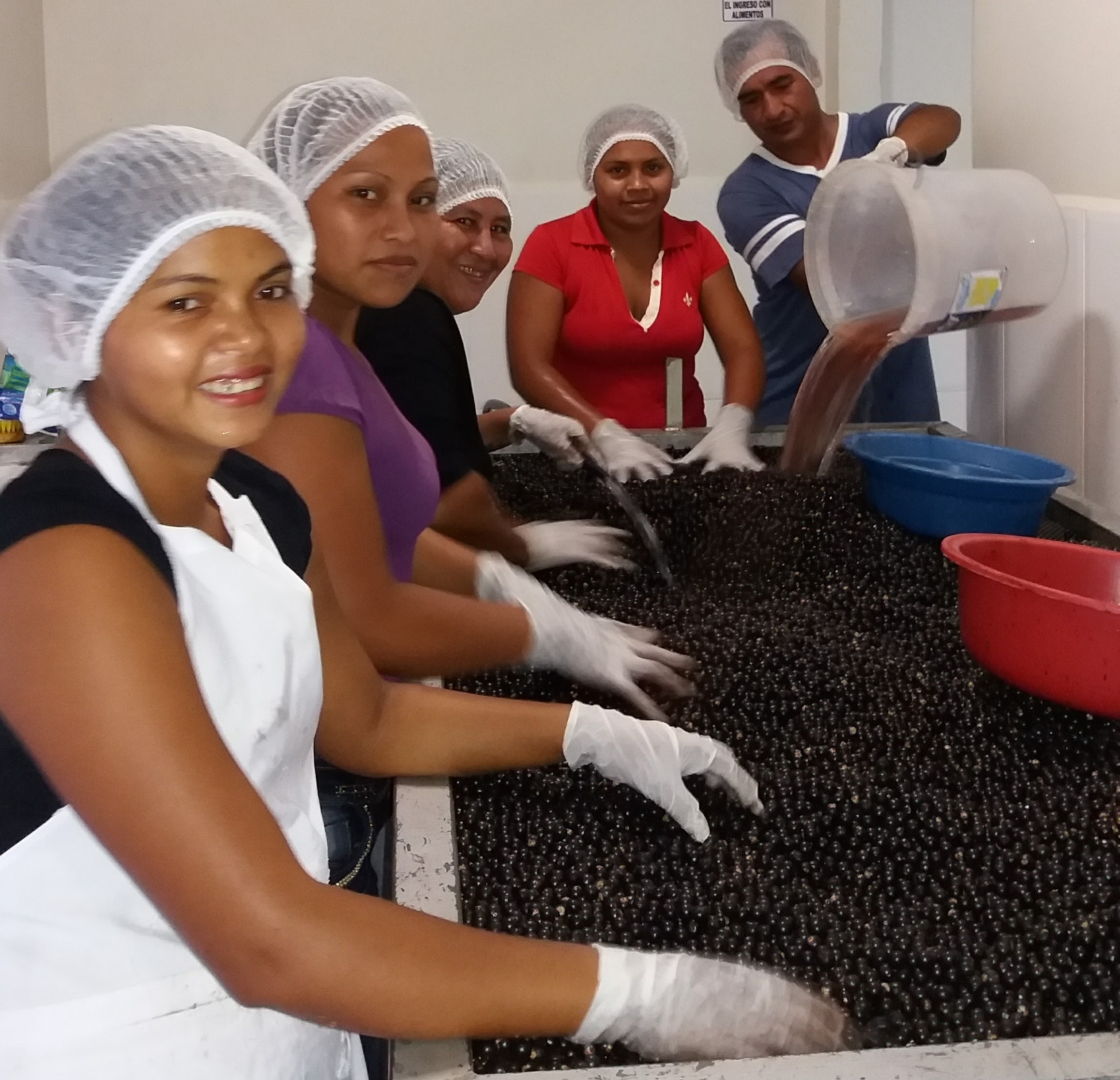 En Bolivia se ha desarrollado un mercado nacional para la pulpa de asaí y sus productos derivados. Foto: FAN.
