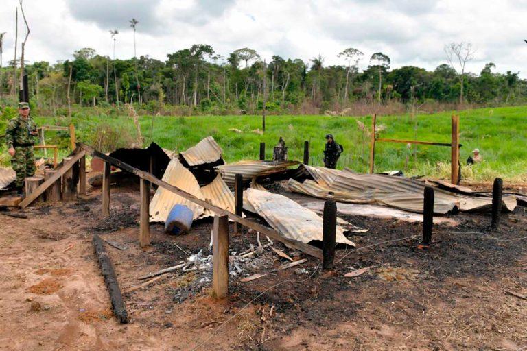 En la primera fase de la Campaña 'Artemisa', en la Serranía de Chiribiquete y los Llanos de Yarí, la Fuerza Pública recuperó 120 hectáreas de bosques, capturó a 10 personas y decomisó vehículos, armas y maquinaria. Foto: Efraín Herrera - Presidencia de Colombia.