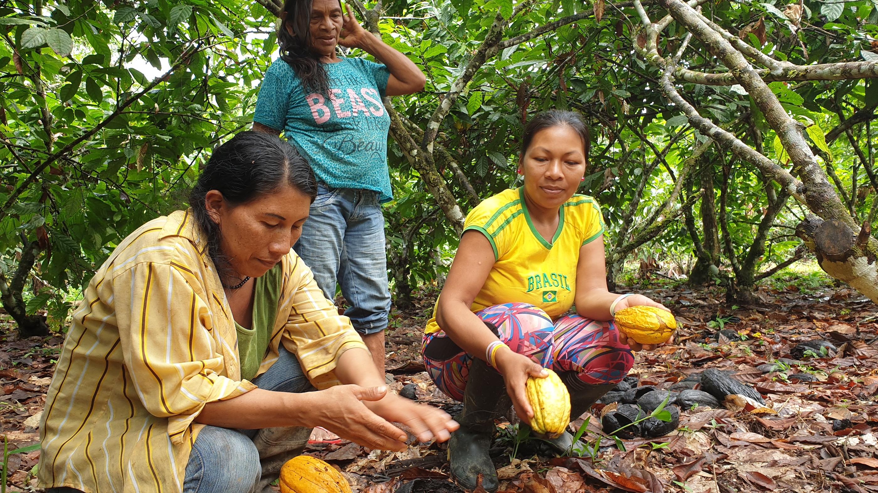 Las mujeres waoranis jugaron un rol trascendental en la definición del proyecto Chocolate para la Conservación. Foto: Ecociencia.