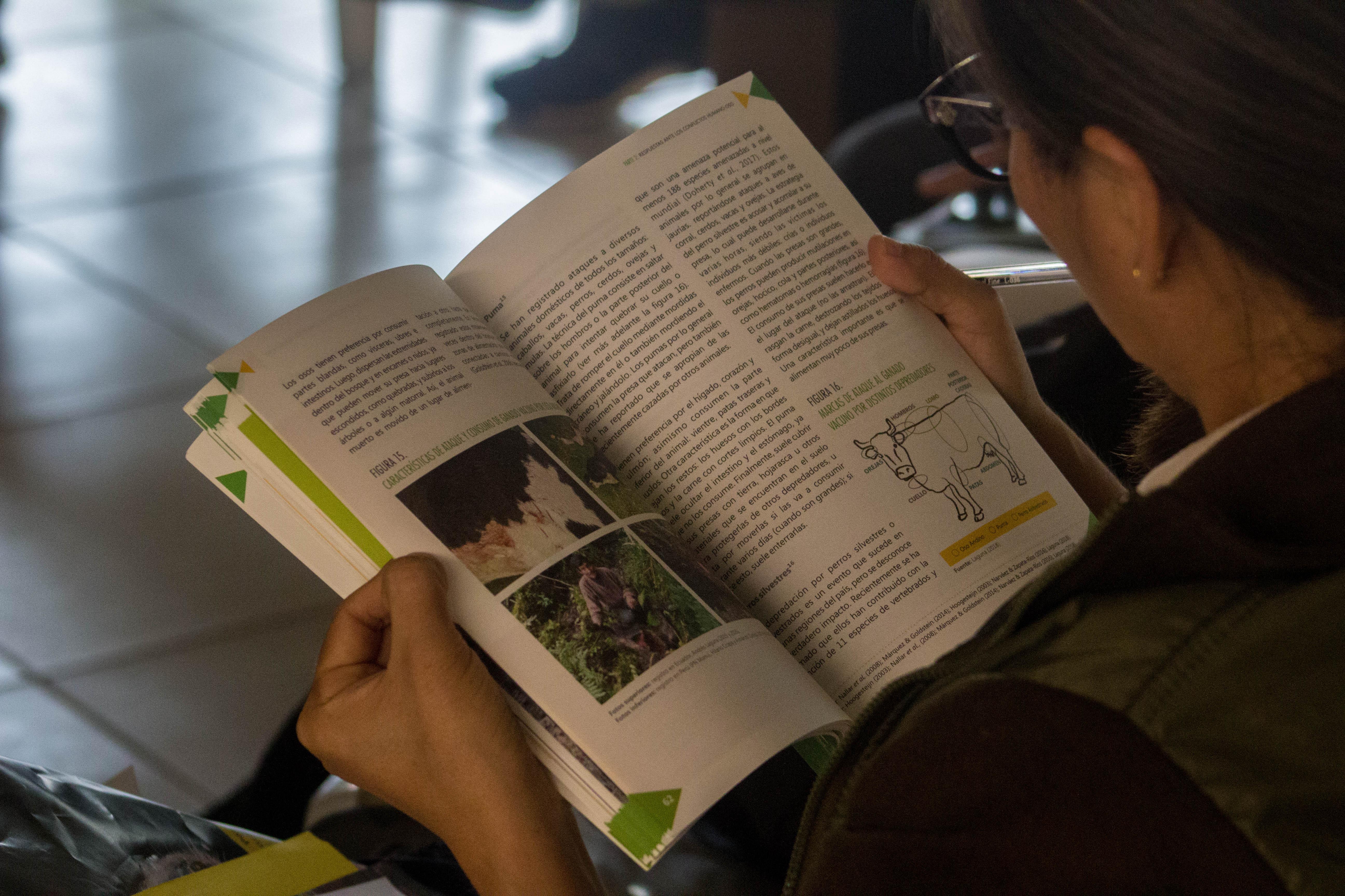 """La guía técnica """"Conviviendo con el oso andino en el Perú: diagnóstico y pautas para el manejo de los conflictos humano-oso"""" fue lanzada este año. Foto: Andrés Laguna."""