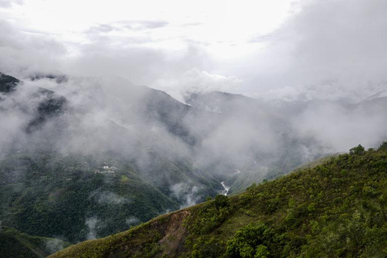 Los bosques en Bolivia están amenazados por la rápida expansión de las fronteras extractivas. Foto: Alfredo Romero.