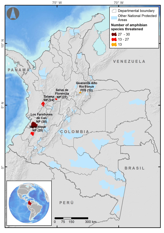 Áreas protegidas donde se trabaja la estrategia de conservación de anfibios en Colombia. Mapa: WCS Colombia.