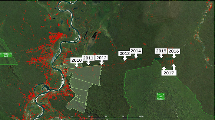 De acuerdo con las imágenes satelitales, la vía empieza a aparecer desde el 2012 y llega a la concesión en el 2015. Desde ese entonces hasta la fecha se han abierto caminos forestales dentro de las concesiones otorgadas. Imagen: Rainforest Foundation US.
