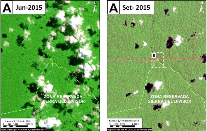 Según las imágenes satelitales, en junio del 2015 no se observaba ninguna vía abierta. En setiembre del mismo año, sin embargo, ya se registraba en las imágenes el ingreso de la vía dentro de Sierra del Divisor. Imagen: ACCA.