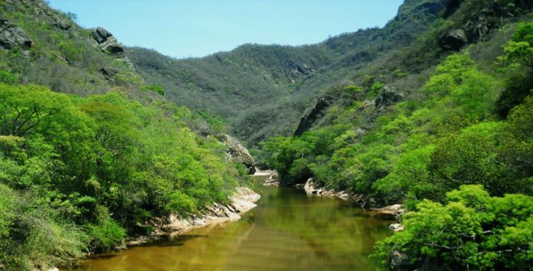 El Chaco boliviano es el territorio mejor conservado de este ecosistema. Foto: Fundación Natura Bolivia.