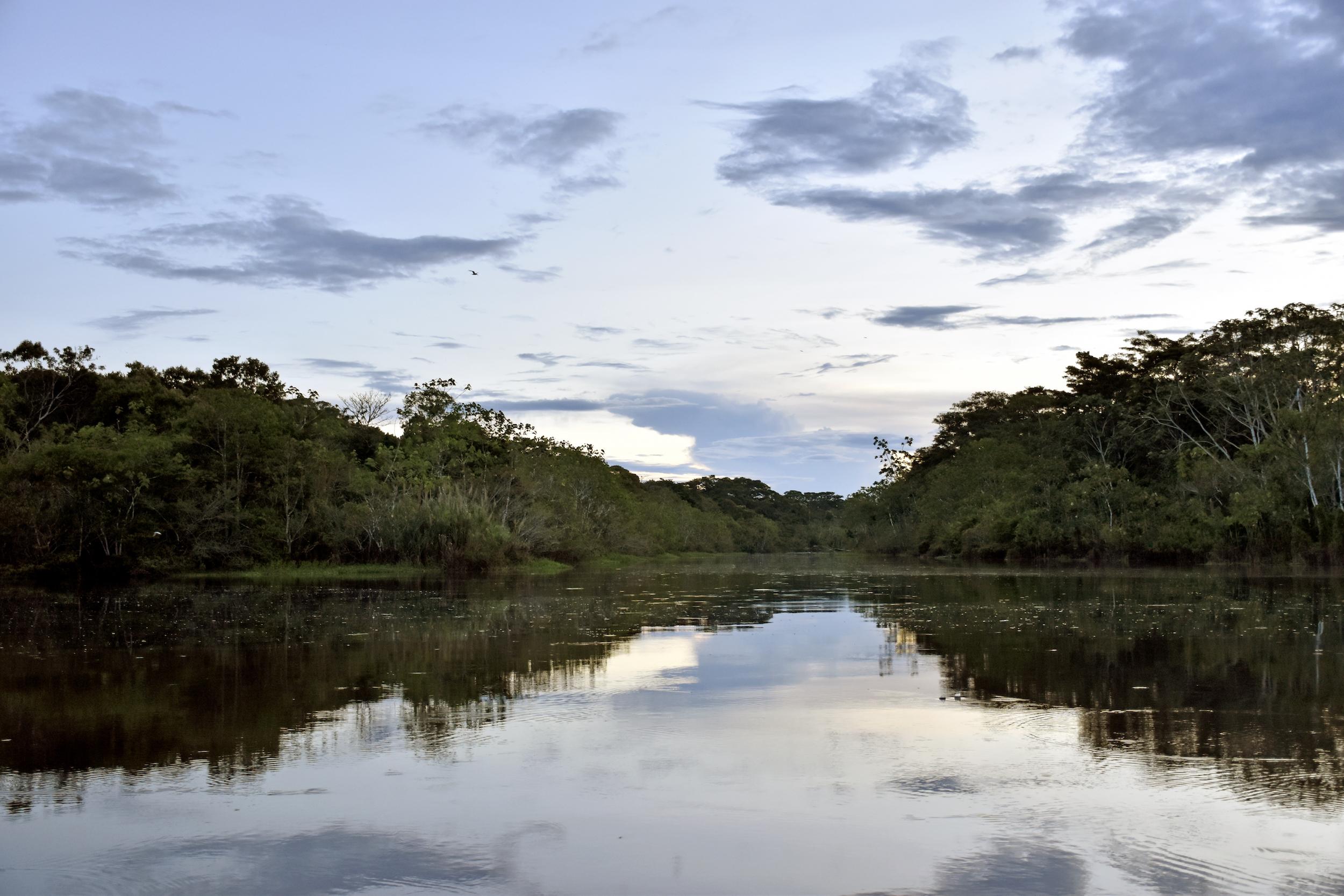 La propuesta es destinar 140 millones de dólares en los próximos 10 años para las zonas de conservación. Foto: Jeffrey Dávila / WWF Perú.