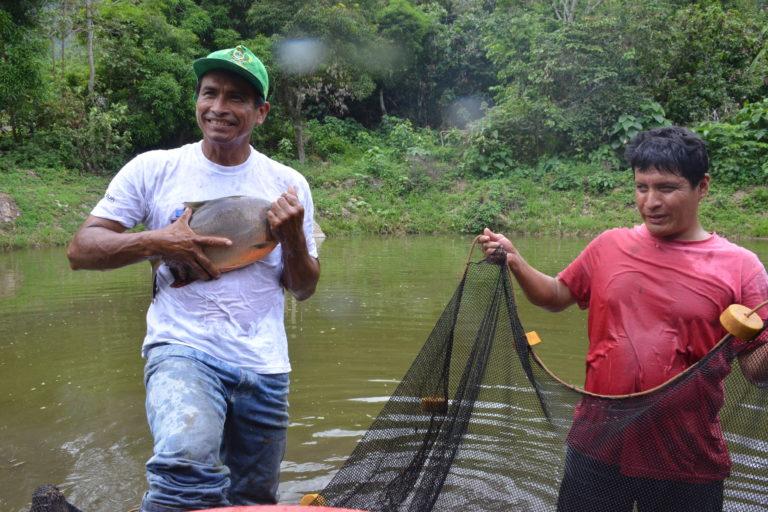 Los fondos también se usarán en la implementación de proyectos económicos. Foto: Walter Aguirre / WWF Perú.